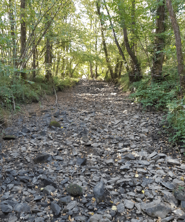 Les cours d'eau du SMABCAC : Ça chauffe !