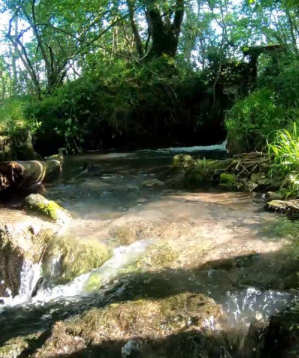 A la découverte du Ruisseau des Chézeaux !